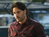 tbs04-alcide